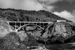 Przerzuca most z wielkimi sosnami below i oceanu wodnym spływaniem Obrazy Royalty Free