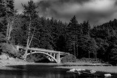 Przerzuca most z wielkimi sosnami i nawadnia spływanie below Zdjęcie Stock