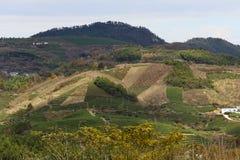Przesadnym rozwojem góra blisko Szanghaj Fotografia Royalty Free