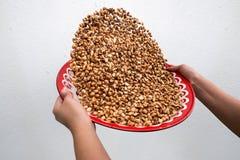 Przesiewam piec arachidy na szarości ściany tle obraz royalty free