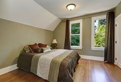 Przesklepionego sufitu i zielonej oliwki ściany 3 d sypialni otoczenia wewnętrznej pozbawione piorun Obrazy Stock