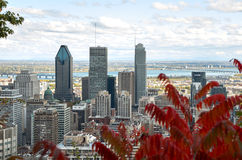 Przestój Montreal w spadku fotografia royalty free