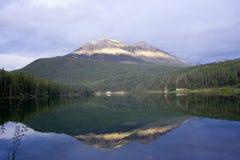 przestań alces świtu jeziora ponad tęczą Zdjęcia Stock