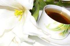 przestań herbaty. Fotografia Royalty Free