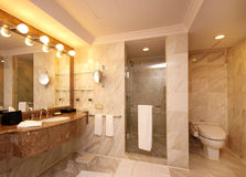 przestronna toaleta Obraz Royalty Free