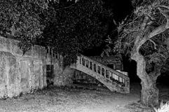 Przestrzeń pod schody blisko drzewa zdjęcia stock