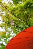 Przesunięcie obiektywu japończyka ogród obraz stock