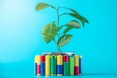 Przetwarzać i usuwanie alkaliczne baterie Pojęcie energetyczny życzliwy ekologia i środowisko obraz royalty free