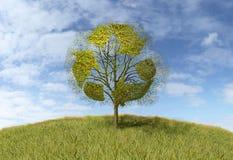 Przetwarzać znaka na drzewie royalty ilustracja