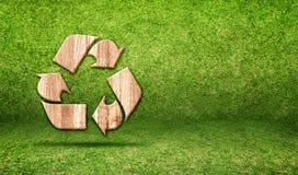 Przetwarza drewnianą ikonę inside w trawa pokoju, Eco pojęcie Obrazy Royalty Free