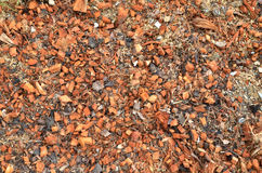 Przetwarzać kompost Zdjęcia Stock
