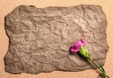Przetwarza zmarszczenie papier z różowym canation kwiatem Obraz Stock