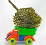 Przewieziony durian Obraz Royalty Free