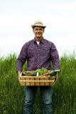 Przewożeń średniorolni warzywa zdjęcia stock