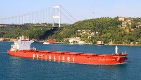 Przewoźnika masowy statek Zdjęcia Stock