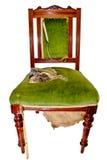 przewodniczy starego Obrazy Royalty Free