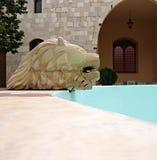 przewodzi lwa s Zdjęcia Stock