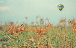 przez balonu gazu prerię zdjęcia royalty free