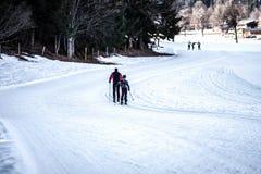 Przez cały kraj narciarstwa ślad Obraz Royalty Free