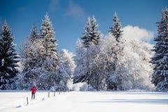 Przez cały kraj narciarstwo: młodego człowieka przez cały kraj narciarstwo Obrazy Stock