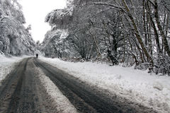 Przez lasu śniegu mężczyzna odprowadzenie Zdjęcie Royalty Free