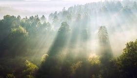 Przez mgły Fotografia Stock