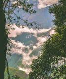 Przez okno natura Obraz Stock