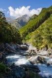 Przez zielonej doliny rzeczni przepływy Obraz Royalty Free