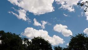 przyśpieszać Białe cumulus chmury Rusza się W niebieskim niebie zdjęcie wideo