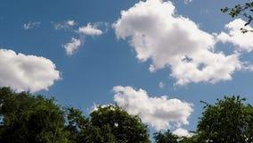 Przyśpieszający W górę Białych cumulus chmur Przekształcać W niebieskim niebie zdjęcie wideo