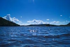 Przy jeziorem Fotografia Royalty Free