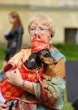 Przy miasto rywalizaci psami Zdjęcia Royalty Free