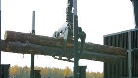 Przy miejsca lądowaniem leśni maszynowi ładunki beli ciężarówka Lasowe maszyna puszka bele zbiory