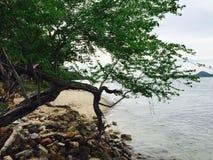 Przy morzem Zdjęcia Stock