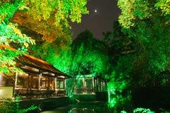 Przy noc chińczyka ogród zdjęcie stock
