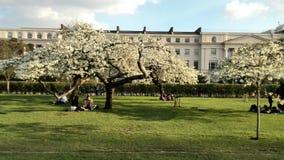 Przy parkiem Zdjęcie Royalty Free