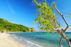 Przy Pattaya Samae plaża, Tajlandia. Zdjęcie Royalty Free