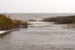 Przy zatoką Ahrenshoop Zdjęcia Stock