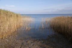 Przy zatoką Ahrenshoop Obrazy Royalty Free