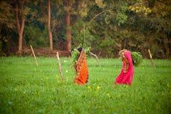Przy ziemią uprawną kobiety indiańska praca Zdjęcie Royalty Free