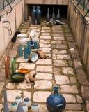 Przybłąkani koty obrazy royalty free