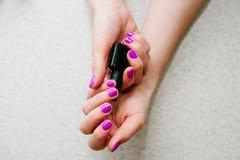Przybija purpury, menchie W rękach gel gwoździe, manicure'u elementarza baza fotografia stock