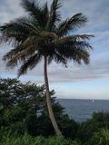 Przychodzący żagiel Hawaje Daleko od Obraz Royalty Free