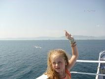 Przychodzi dostawać mię seagulls Zdjęcie Stock