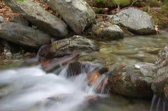 Przyciągający uwagę andrefreshing lasowy strumień Zdjęcie Royalty Free