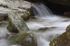 Przyciągający uwagę i odświeżający lasowy strumień Zdjęcia Royalty Free