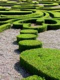 przycinający hedges Zdjęcie Royalty Free