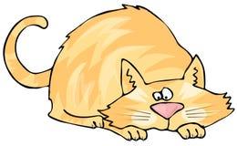 przycupnięcie kota Zdjęcie Stock