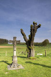 Przydroże krzyż blisko Terborgh kasztelu Zdjęcie Stock