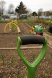 Przydziałów ogródy Obraz Royalty Free